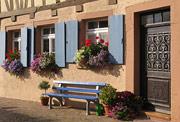 Fachwerkhaus mit alter Haustür und blauen Fensterläden. Davor steht eine blaue Holzbank.