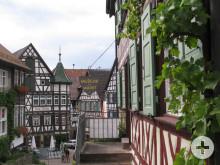 Blick auf das Museum am Markt