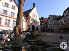 Der Marktplatz mit Brunnen und Rathaus