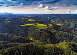 Blick auf den Liefersberg