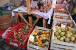 Bauernmarkt 2011 081