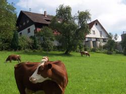 Hansjörgenhof-Sum
