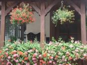 Blumenschmuck2