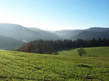 Rohrbach im Herbst