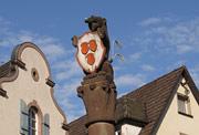 Der Bär mit Wappen auf dem Bärenbrunnen am Marktplatz